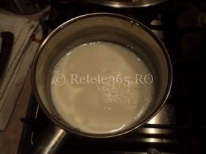 Jeleu din lapte retete ducan, retete sanatoase