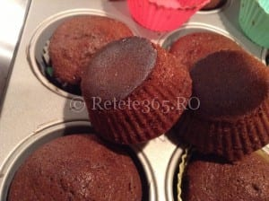 Retete365.RO   Briose cu cacao   Sa bucatarim cu Leta