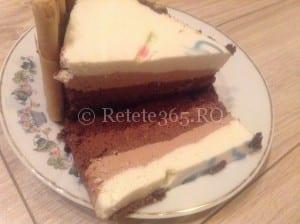 Tort cu 3 feluri de ciocolata retete ducan, retete sanatoase
